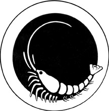 Micro-Lobster logo 3in 72dpi.jpg (13481 bytes)
