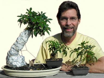 technique behind bonsai plants